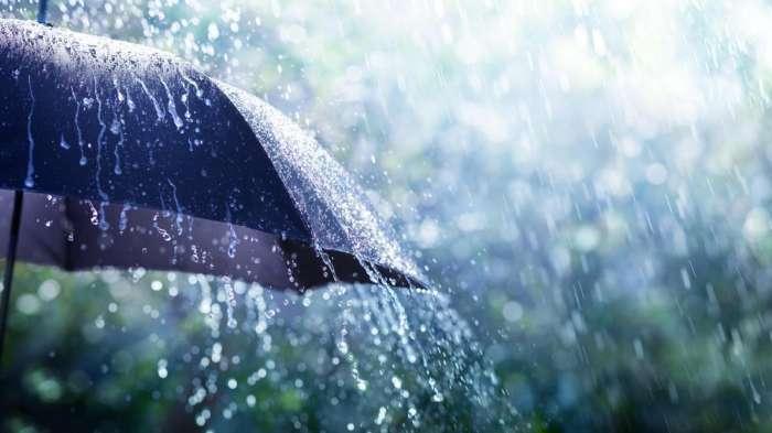 طقس حار وأمطار رعدية خلال نهاية الأسبوع بهذه المناطق